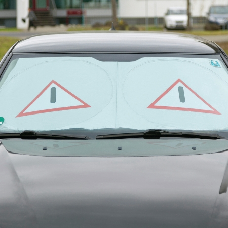 Protector for windscreen