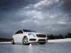 DEZENT TG_Mercedes A-Class_winterpic01